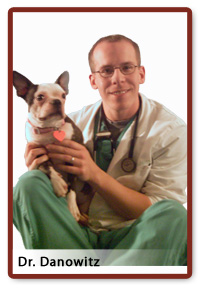 When you bring your pets in for their annual physical examination, ...